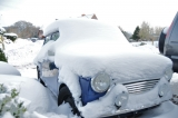 Mini Im Schnee